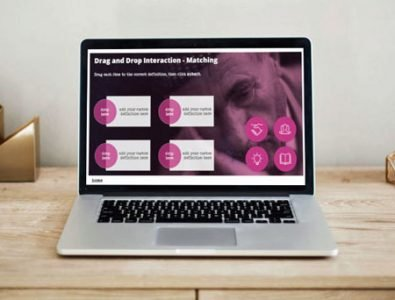 storyline e-Learning drag and drop interaction template